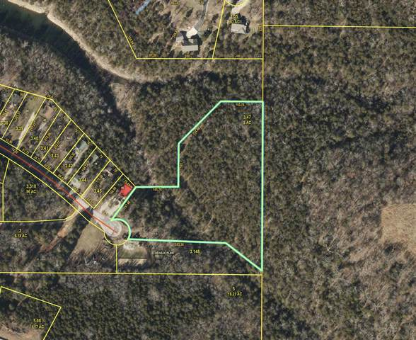 000 Air Park Drive, Golden, MO 65658 (MLS #60169726) :: The Real Estate Riders