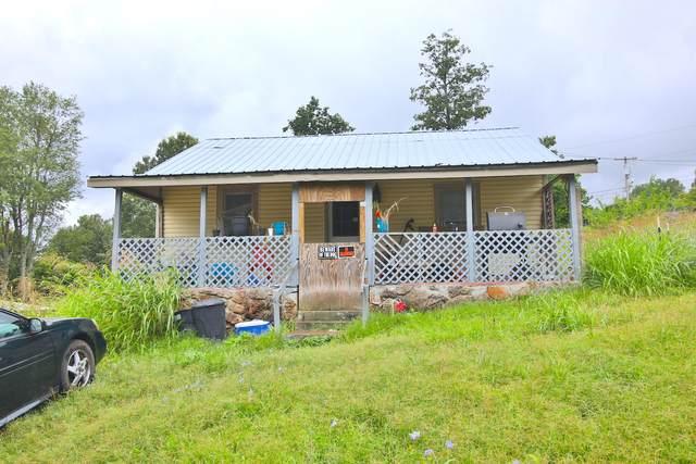 3045 Nettleton Ave, Thayer, MO 65791 (MLS #60169912) :: Team Real Estate - Springfield