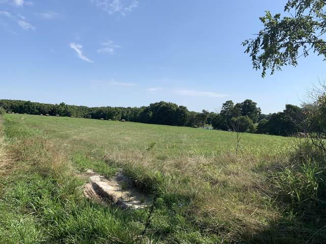 000 State Hwy 97, Pierce City, MO 65723 (MLS #60170053) :: The Real Estate Riders