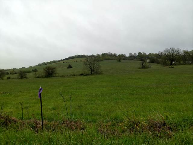 000 State Hwy P, Seymour, MO 65746 (MLS #60170143) :: Team Real Estate - Springfield