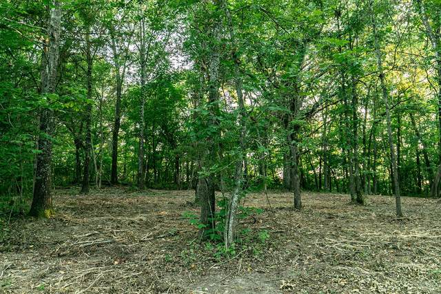 Lot 1 Ph 2 Misty River Subdivision, Nixa, MO 65714 (MLS #60170184) :: United Country Real Estate