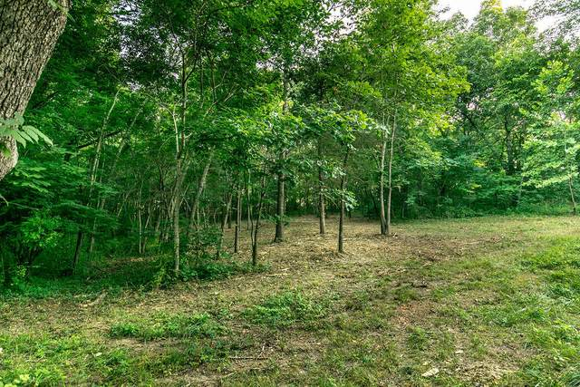 Lot 2 Ph 2 Misty River Subdivision, Nixa, MO 65714 (MLS #60170189) :: United Country Real Estate