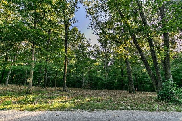 Lot 5 Ph 2 Misty River Subdivision, Nixa, MO 65714 (MLS #60170193) :: Team Real Estate - Springfield