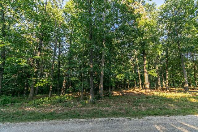 Lot 7 Ph 2 Misty River Subdivision, Nixa, MO 65714 (MLS #60170195) :: Team Real Estate - Springfield