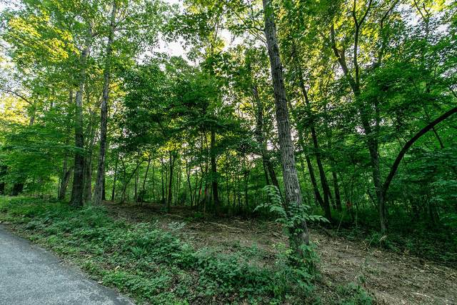 Lot 5 Ph 1 Misty River Subdivision, Nixa, MO 65714 (MLS #60170200) :: The Real Estate Riders
