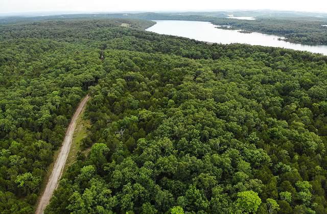 000 Backwoods Road, Cedar Creek, MO 65627 (MLS #60170295) :: Sue Carter Real Estate Group