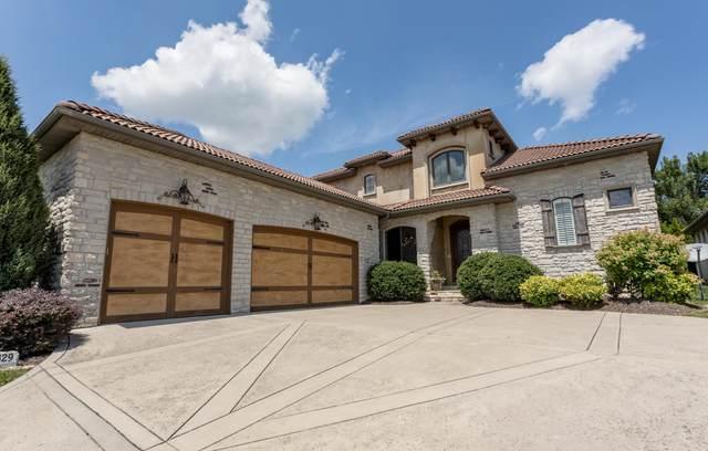 3829 E Knollwood Drive, Ozark, MO 65721 (MLS #60170412) :: Sue Carter Real Estate Group