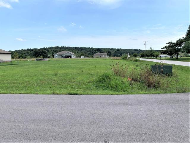 Tbd Lot 8 Priate Lane, Pleasant Hope, MO 65725 (MLS #60170476) :: The Real Estate Riders