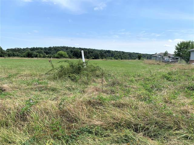Tbd Lot 4 Mccurry Street, Pleasant Hope, MO 65725 (MLS #60170510) :: The Real Estate Riders