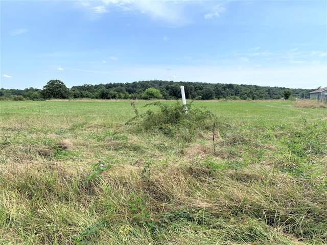 Tbd Lot 5 Mccurry Street, Pleasant Hope, MO 65725 (MLS #60170511) :: The Real Estate Riders