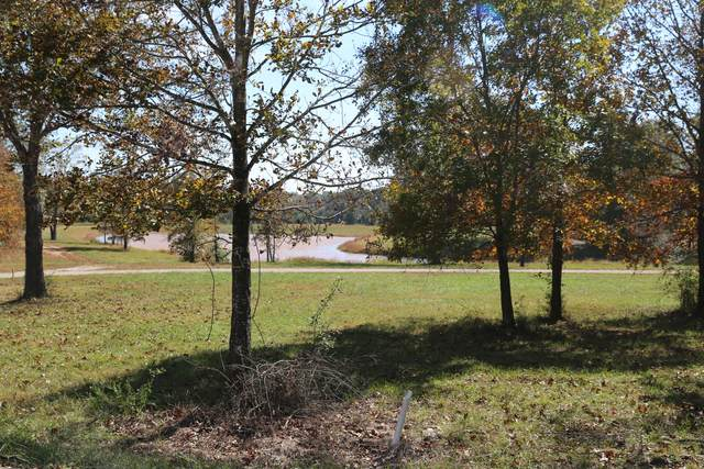 000 Wild Turkey Road Block 1 Lot 1, West Plains, MO 65775 (MLS #60170584) :: United Country Real Estate