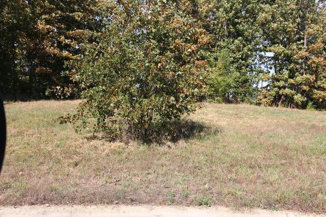 000 Wild Turkey Block 1 Lot 4, West Plains, MO 65775 (MLS #60170589) :: Team Real Estate - Springfield
