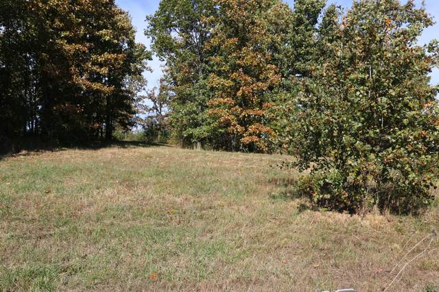 000 Wild Turkey Road Block 1 Lot 5, West Plains, MO 65775 (MLS #60170590) :: Weichert, REALTORS - Good Life