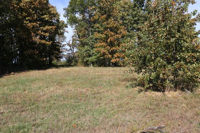 000 Wild Turkey Road Block 1 Lot 6, West Plains, MO 65775 (MLS #60170592) :: Weichert, REALTORS - Good Life