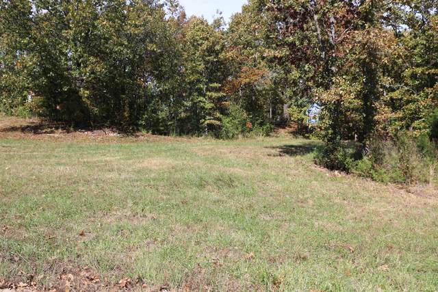 000 Wild Turkey Road Block 1 Lot 13, West Plains, MO 65775 (MLS #60170603) :: Weichert, REALTORS - Good Life