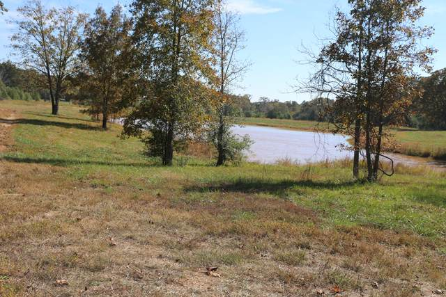 000 Wild Turkey Drive Block 1 Lot 18, West Plains, MO 65775 (MLS #60170606) :: Weichert, REALTORS - Good Life