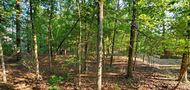 Tbd(Lot 3) Little Aunts Creek Road, Kimberling City, MO 65686 (MLS #60170659) :: Evan's Group LLC