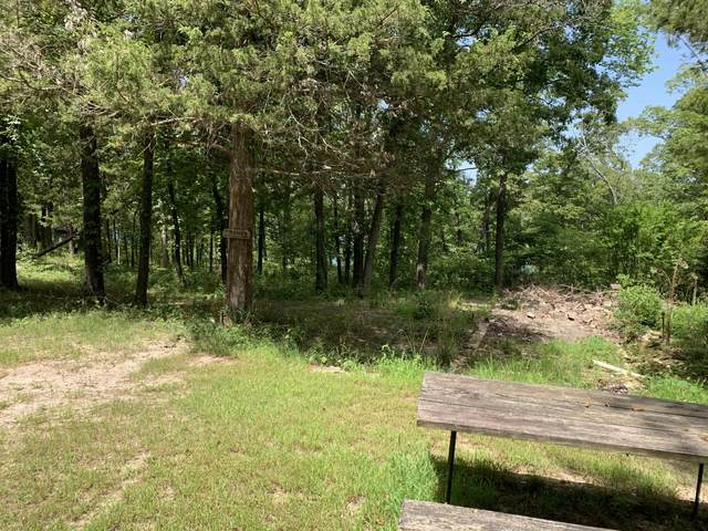 183 Indian Hills Lane, Kimberling City, MO 65686 (MLS #60170671) :: Evan's Group LLC