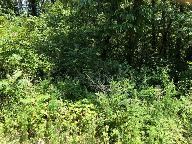 000 Peach Lane Lane, Ridgedale, MO 65739 (MLS #60170680) :: Sue Carter Real Estate Group