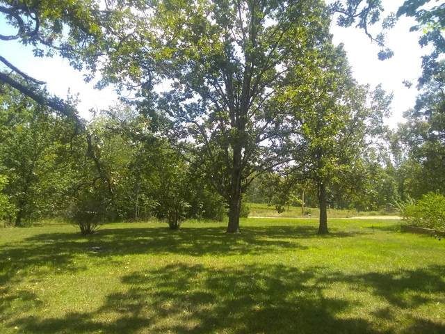 000 County Road 8190, West Plains, MO 65775 (MLS #60170697) :: Sue Carter Real Estate Group