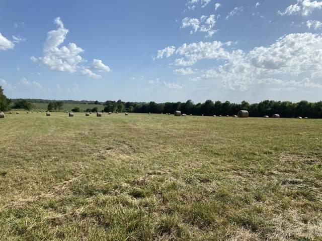 2169 S Farm Road 87, Springfield, MO 65802 (MLS #60170734) :: Weichert, REALTORS - Good Life