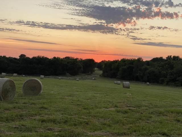 2169 S Farm Road 87, Springfield, MO 65802 (MLS #60170757) :: Weichert, REALTORS - Good Life