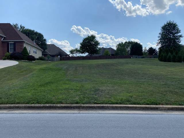 6083 S Overlook Trail, Springfield, MO 65810 (MLS #60171097) :: Weichert, REALTORS - Good Life