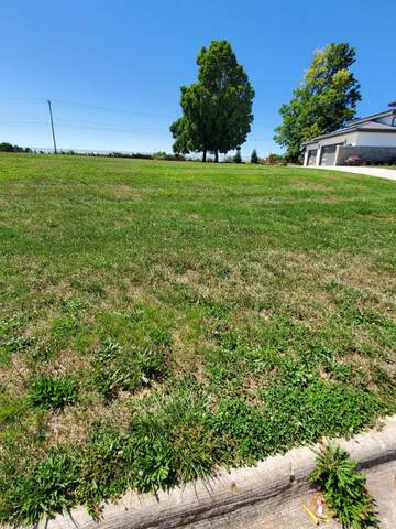 Lot 1 Dunrobin 3, Springfield, MO 65809 (MLS #60171184) :: United Country Real Estate