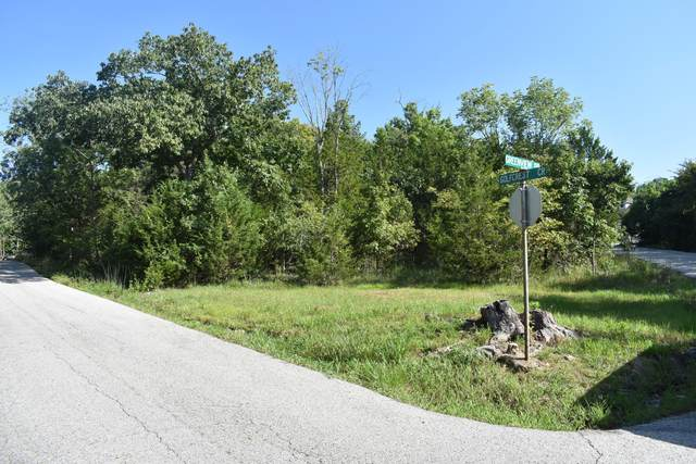 000 Greenview Drive, Kimberling City, MO 65686 (MLS #60171461) :: Sue Carter Real Estate Group