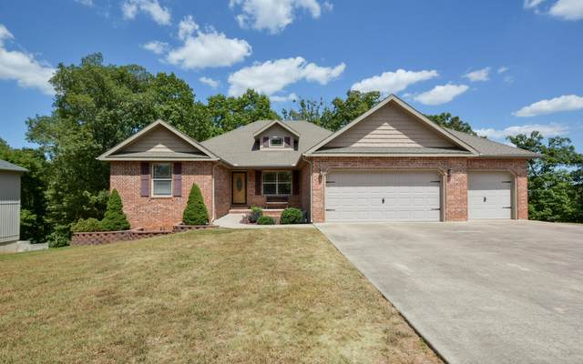 237 Southview Drive, Branson, MO 65616 (MLS #60171678) :: Clay & Clay Real Estate Team