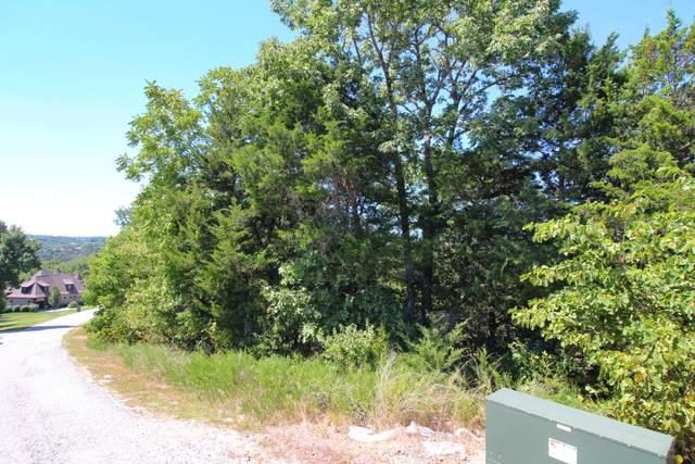 Lot 178 Black Forest Lane, Branson West, MO 65737 (MLS #60171852) :: The Real Estate Riders