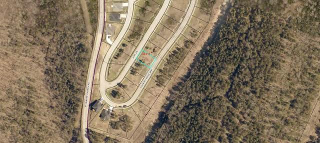 Lot 157 Jury Lane, Branson, MO 65616 (MLS #60171923) :: Team Real Estate - Springfield