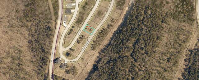 Lot 158 Jury Lane, Branson, MO 65616 (MLS #60171924) :: United Country Real Estate