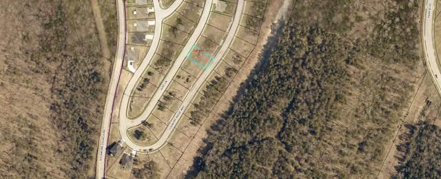 Lot 160 Jury Lane, Branson, MO 65616 (MLS #60171928) :: United Country Real Estate