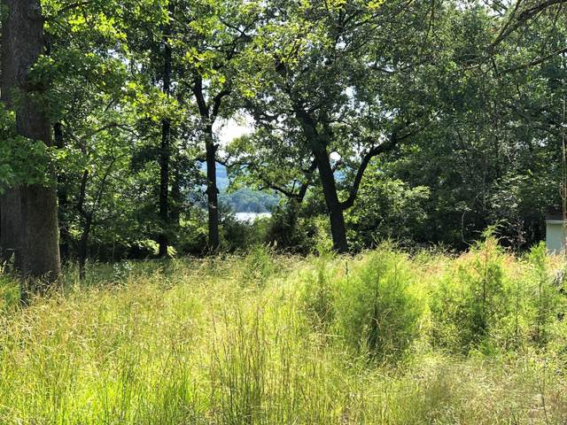 Lot 31, 36, 37, 38, 39 Heller Lane, Branson, MO 65616 (MLS #60172085) :: Evan's Group LLC