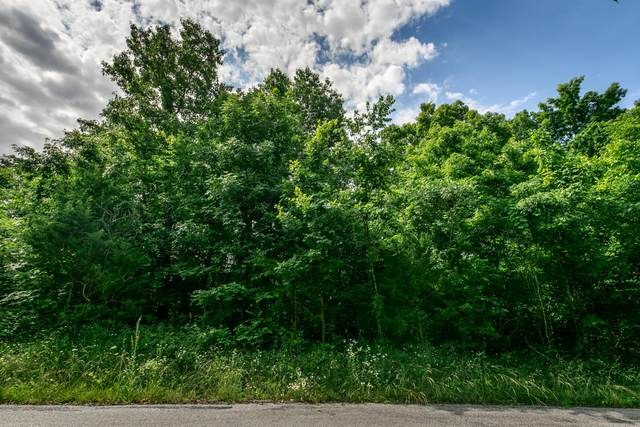 Lot 32 Pebble Creek, Nixa, MO 65714 (MLS #60172394) :: United Country Real Estate