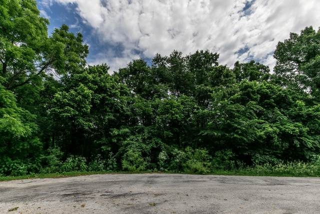 Lot 35 Pebble Creek, Nixa, MO 65714 (MLS #60172395) :: United Country Real Estate