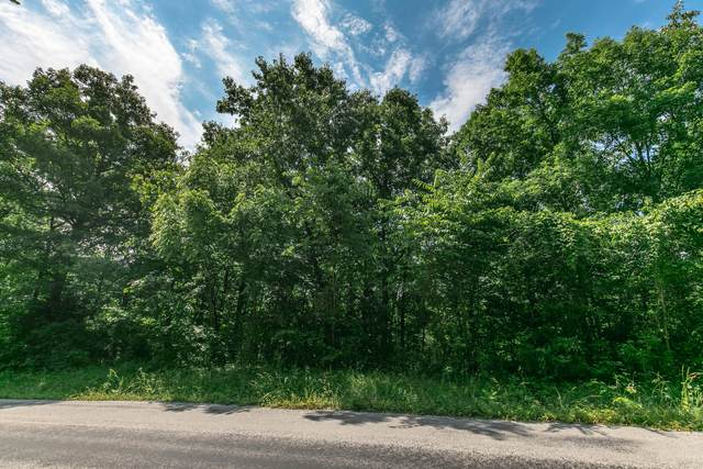Lot 38 Pebble Creek, Nixa, MO 65714 (MLS #60172396) :: United Country Real Estate