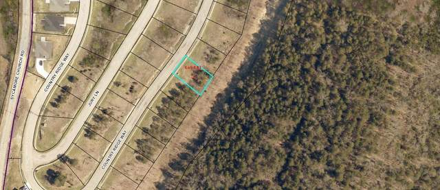 Lot 141 Country Ridge Way, Branson, MO 65616 (MLS #60172398) :: The Real Estate Riders
