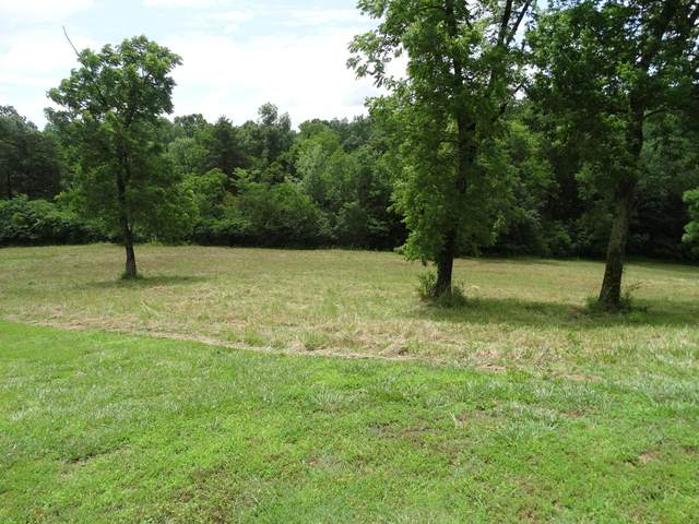 1.48 Ac Bywater Dr, Cape Fair, MO 65624 (MLS #60172432) :: Team Real Estate - Springfield