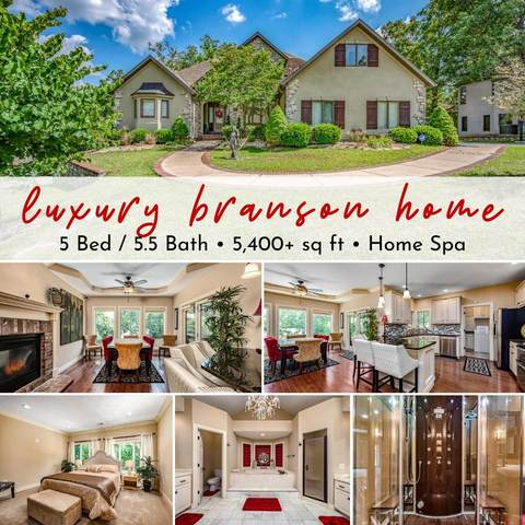 115 Briarcliff Road, Branson, MO 65616 (MLS #60172565) :: The Real Estate Riders
