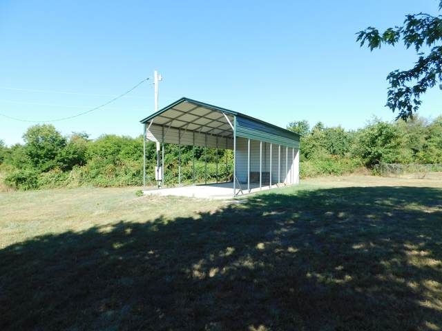 113 Dogwood Circle, Bois D Arc, MO 65612 (MLS #60172612) :: Evan's Group LLC
