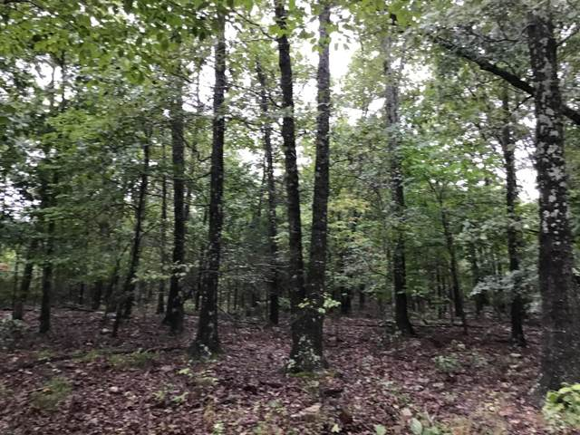000 State Highway O, Udall, MO 65766 (MLS #60172877) :: Weichert, REALTORS - Good Life