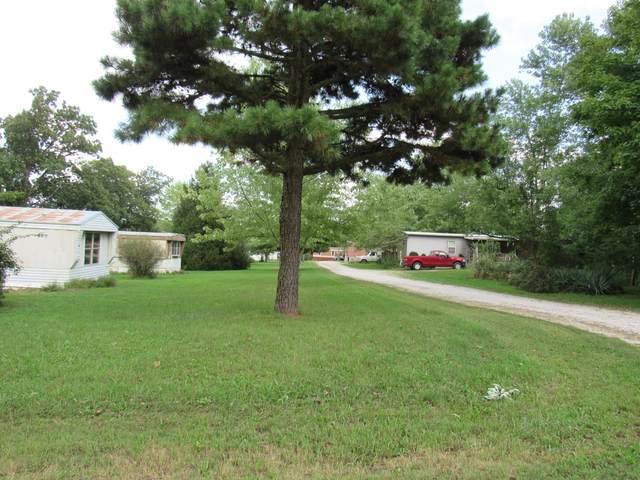 700 Bowen Creek Road, Niangua, MO 65713 (MLS #60173093) :: Weichert, REALTORS - Good Life