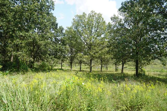1804 Luna Drive, West Plains, MO 65775 (MLS #60173183) :: United Country Real Estate