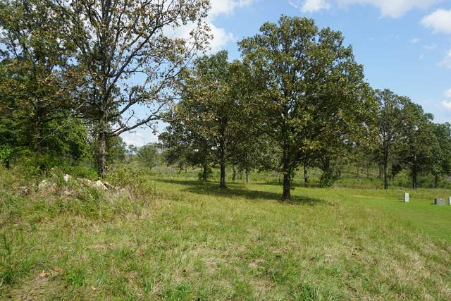 1728 Luna Drive, West Plains, MO 65775 (MLS #60173185) :: United Country Real Estate