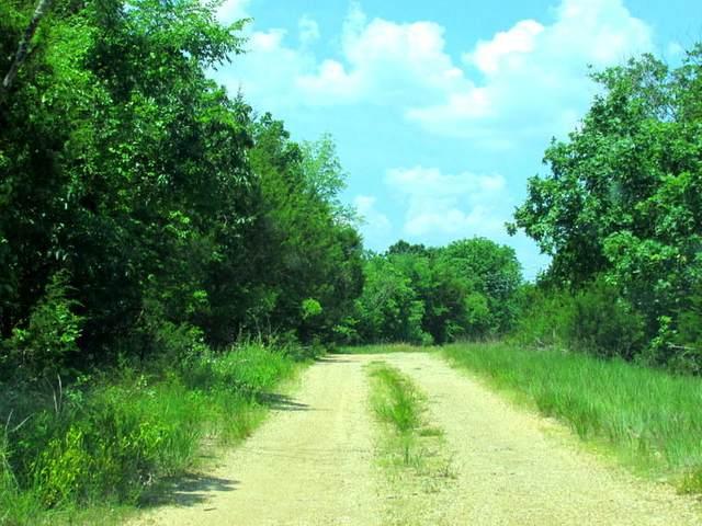 415 Juniper Lane, Ridgedale, MO 65739 (MLS #60173581) :: United Country Real Estate