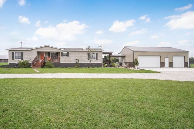 996 Chicory Road, Rogersville, MO 65742 (MLS #60173642) :: Clay & Clay Real Estate Team