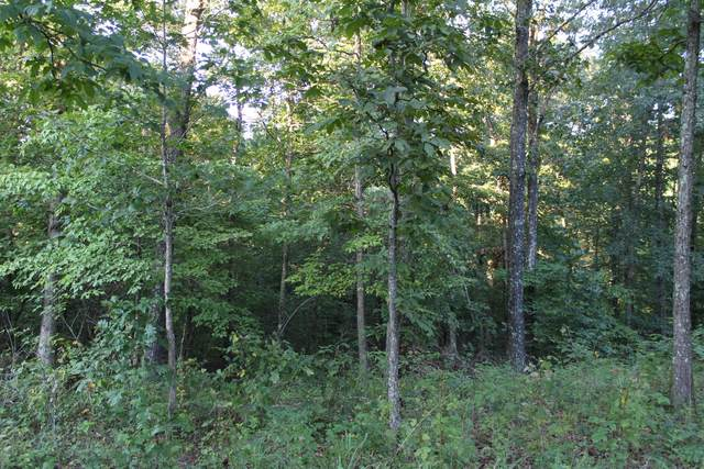 Tbd Route 563, Bunker, MO 63629 (MLS #60173675) :: Weichert, REALTORS - Good Life