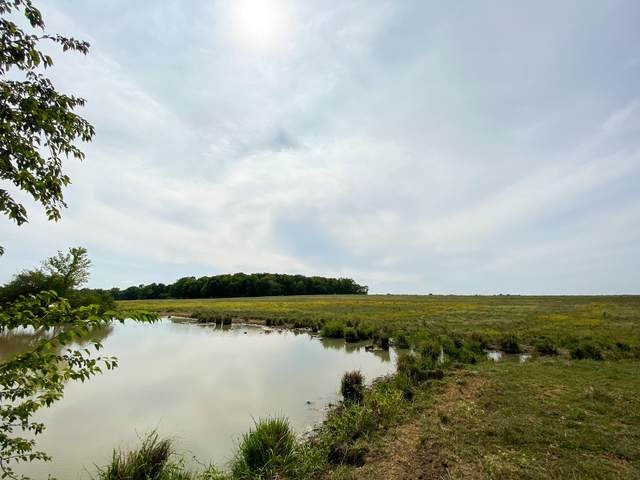 Xxx Oak And County Road 90, Carthage, MO 64836 (MLS #60173689) :: Team Real Estate - Springfield